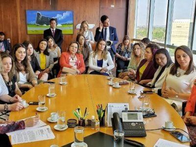 Deputadas Marias Rosas e Rosangela Gomes participaram de reunião com ministros do TSE e debateram sobre a cota de 30% e a regulamentação dos recursos do fundo eleitoral